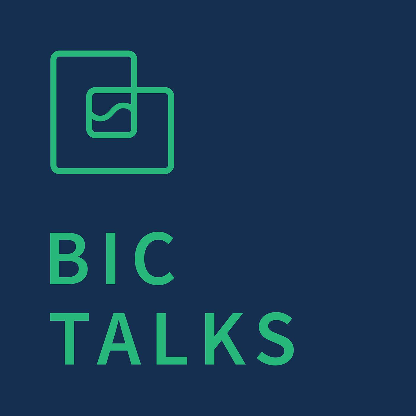 BIC TALKS show art