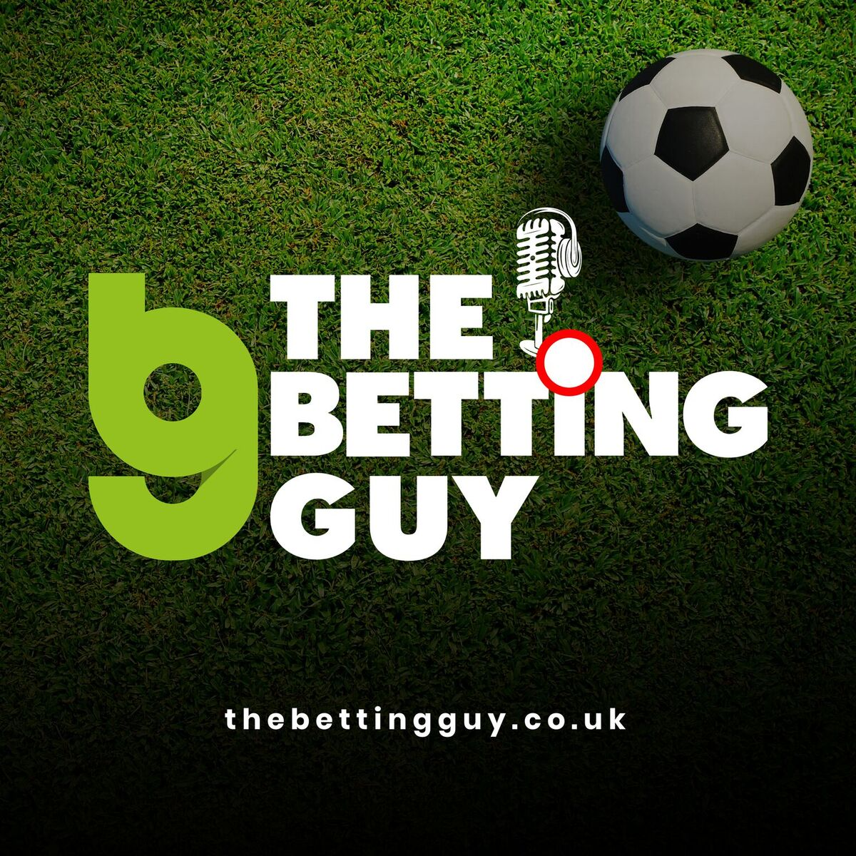 The Betting Guy - Football Betting and Trading Advice and the occasional In Play Trade in the horses  show art