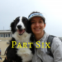 Artwork for 117: Ask Irith, Part 6: Irith Bloom, Positive Reinforcement Trainer: My Dog Does Not Eat
