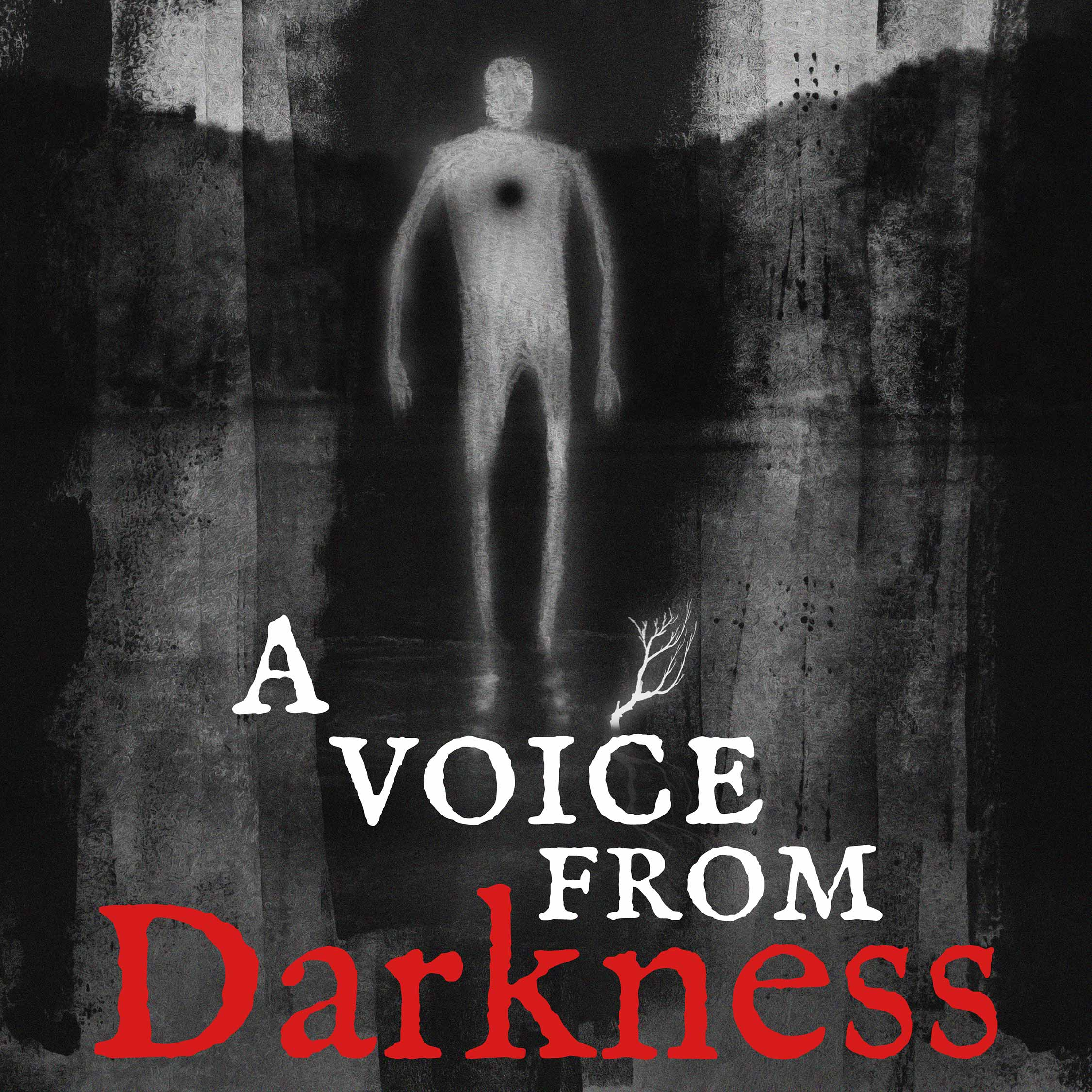 """""""A Voice From Darkness"""" Podcast"""