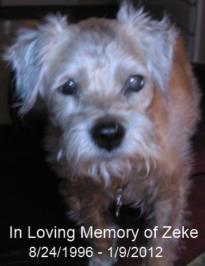 Zeke Tribute