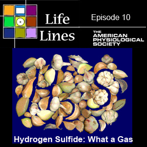 Episode 10: Hydrogen Sulfide - What a Gas