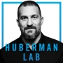 Artwork for Welcome to the Huberman Lab Podcast