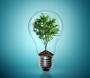 Artwork for Green Jobs & Green Entrepreneur Accelerators, with Justine Burt