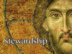 FBP 519 - Stewardship
