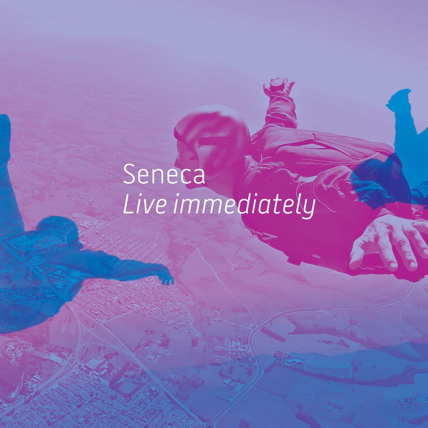 Seneca Financial Solutions show art