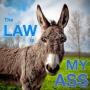 Artwork for 2017 04 08 The Law Is My Ass E16 Gorsuch ACA Eric Schillinger Lena Zwarenseyn