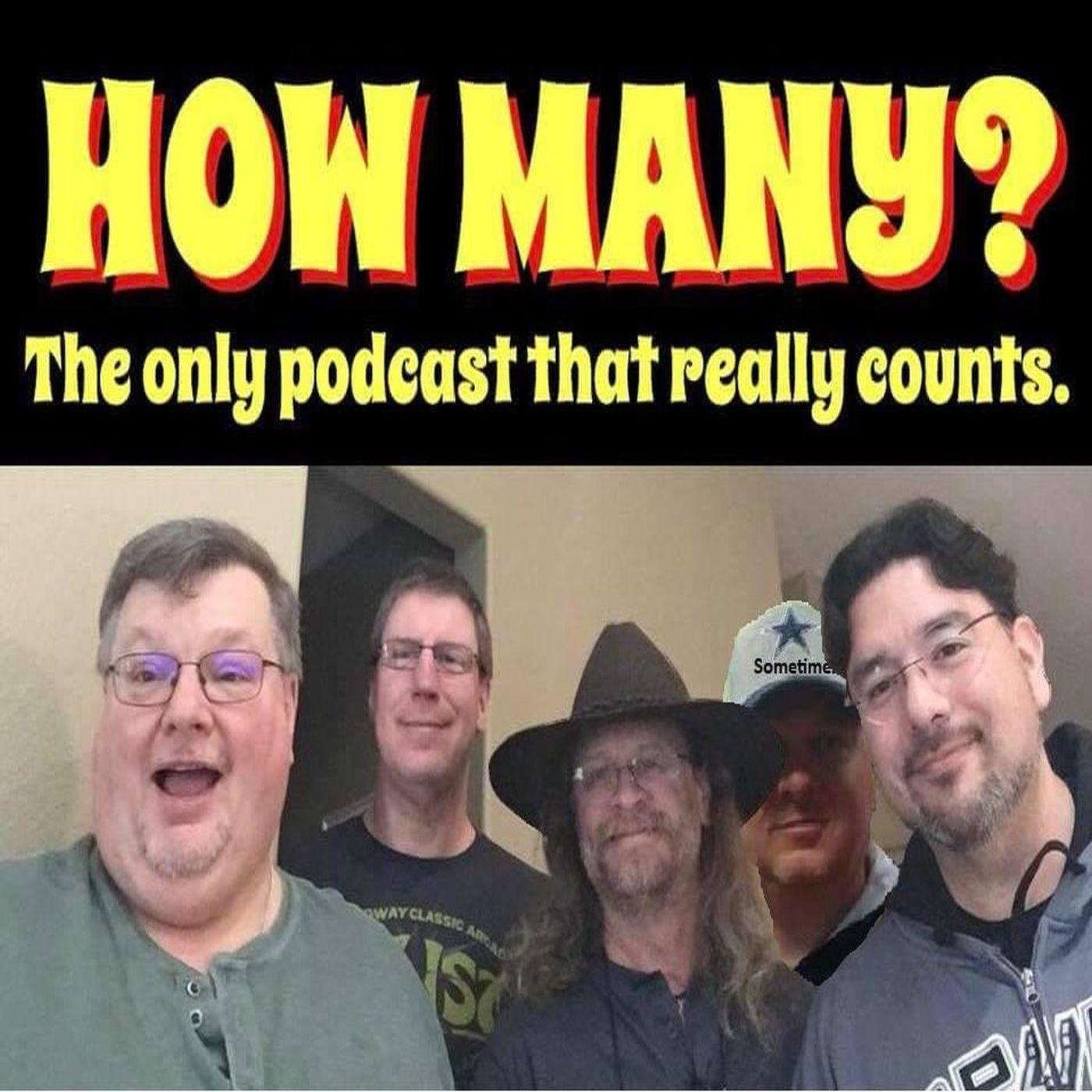 How Many Podcast show art