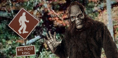 TVAMD4:  Bigfoot!