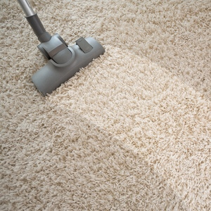 Image Vacuuming a Carpet - www.TheRealTruthAboutYou.com