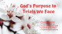 Artwork for God's Purpose in Trials We Face