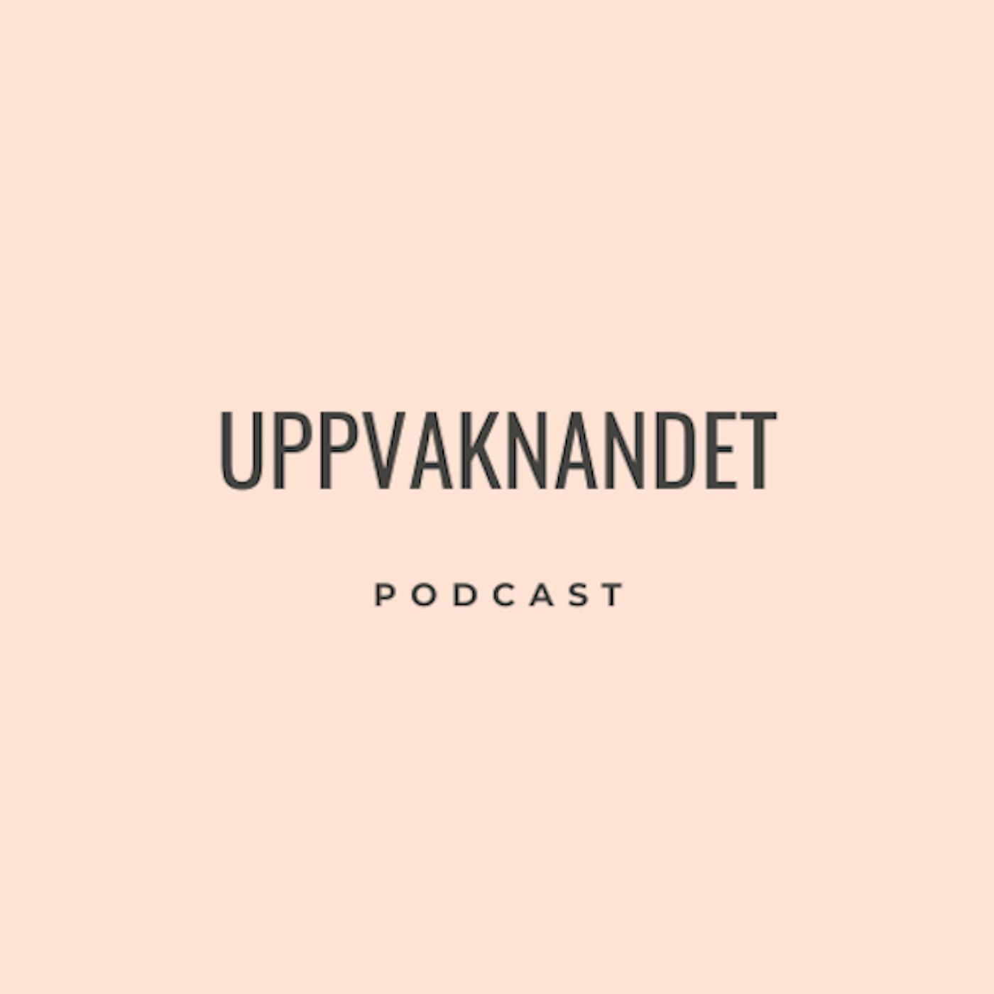 12. Fredrik Andersson om Spiritualitet, Motstånd & Lyssna Inåt