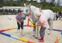 Artwork for 404: Jane Hemmingway-Mohr - Developing Life Skills Through Equine Facilitated Learning
