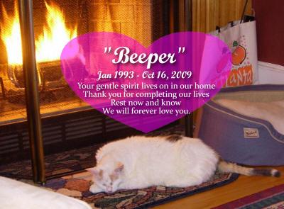 #46 Beeper