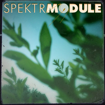 SPEKTRMODULE 27: The Hedgerows Of Purgatory