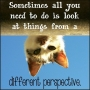 Artwork for Podcast #36: Finding and Gaining New Perspective