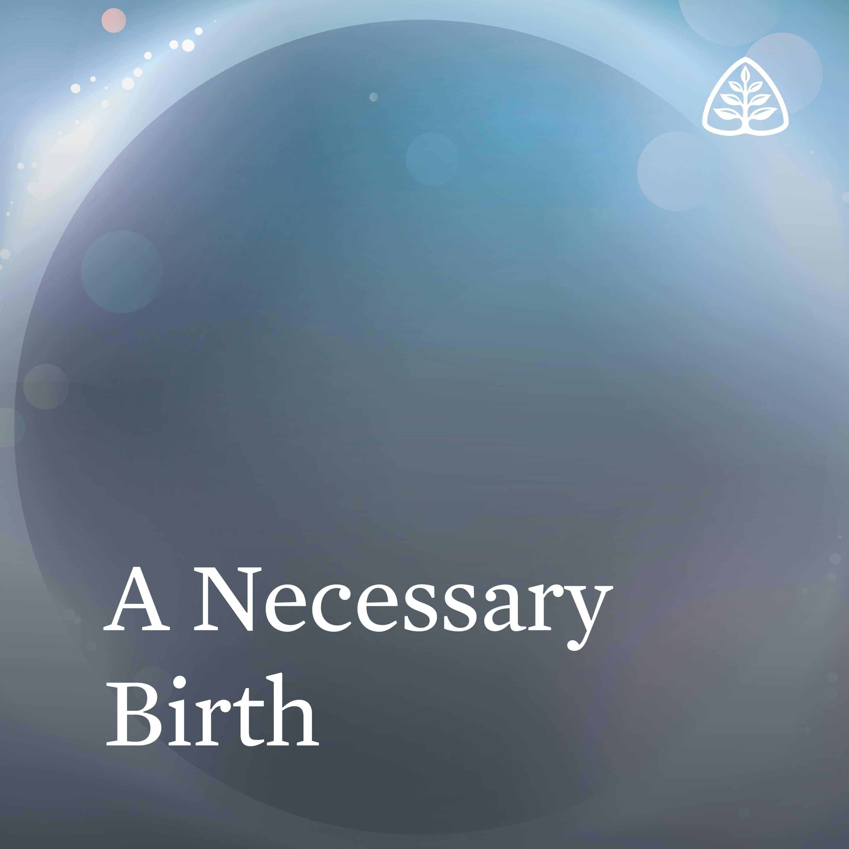 A Necessary Birth