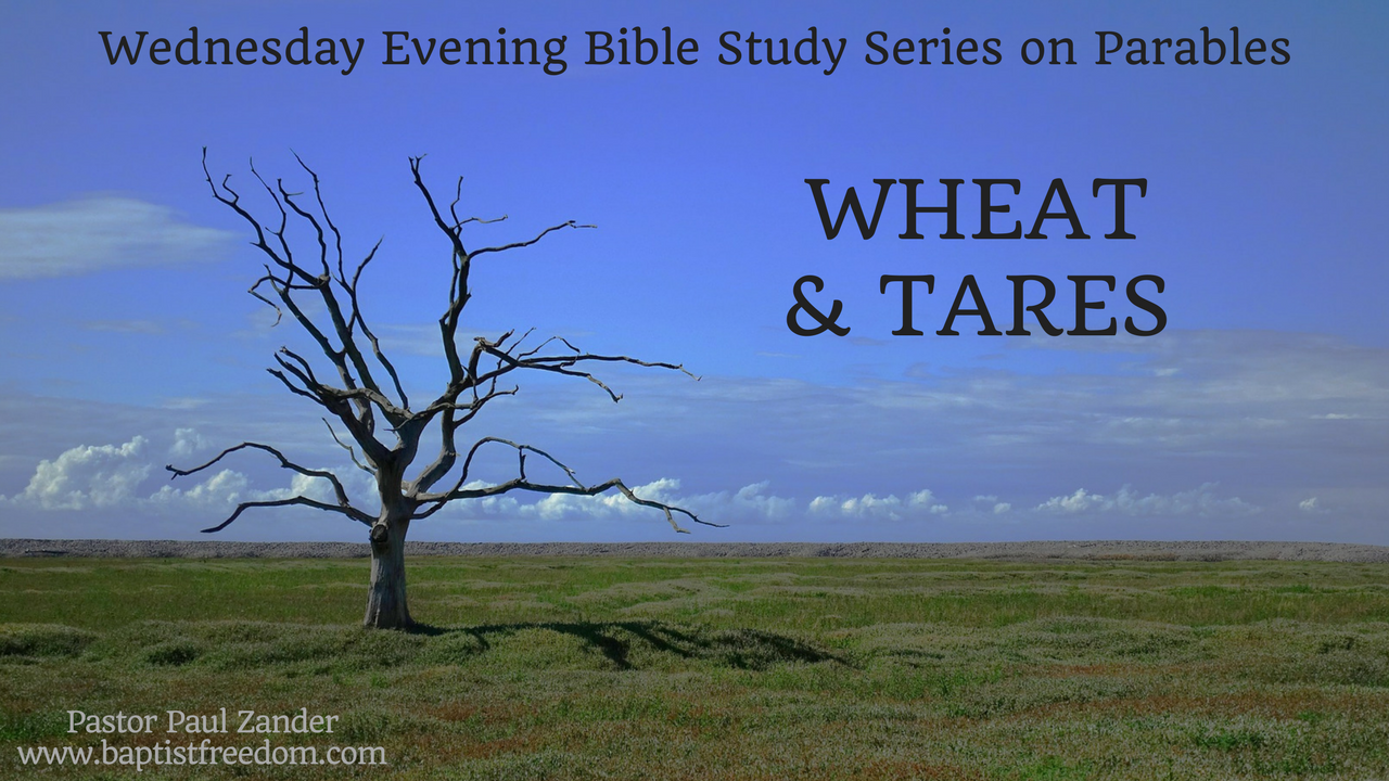 Artwork for Parables: Wheat and Tares