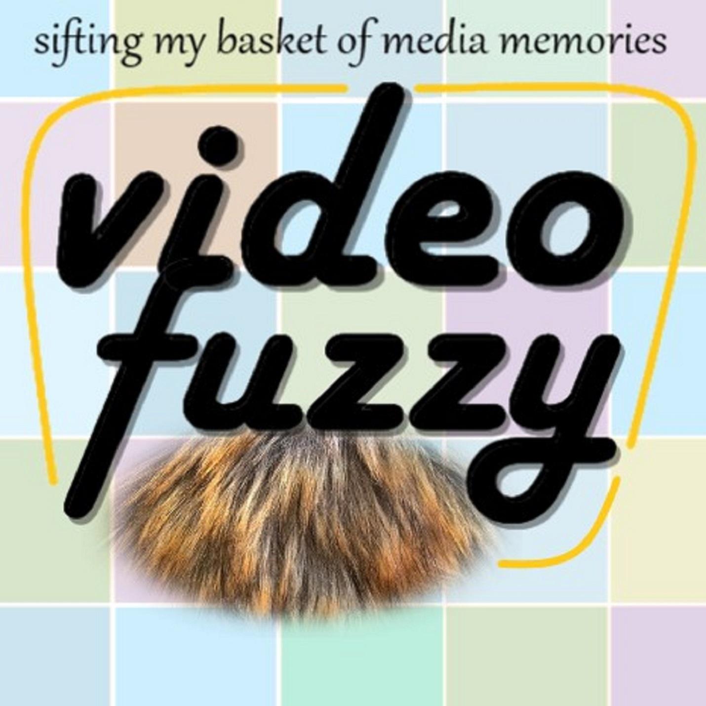 VideoFuzzy show art