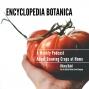 Artwork for Episode 102: Edible Garden Design with Stefani Bittner