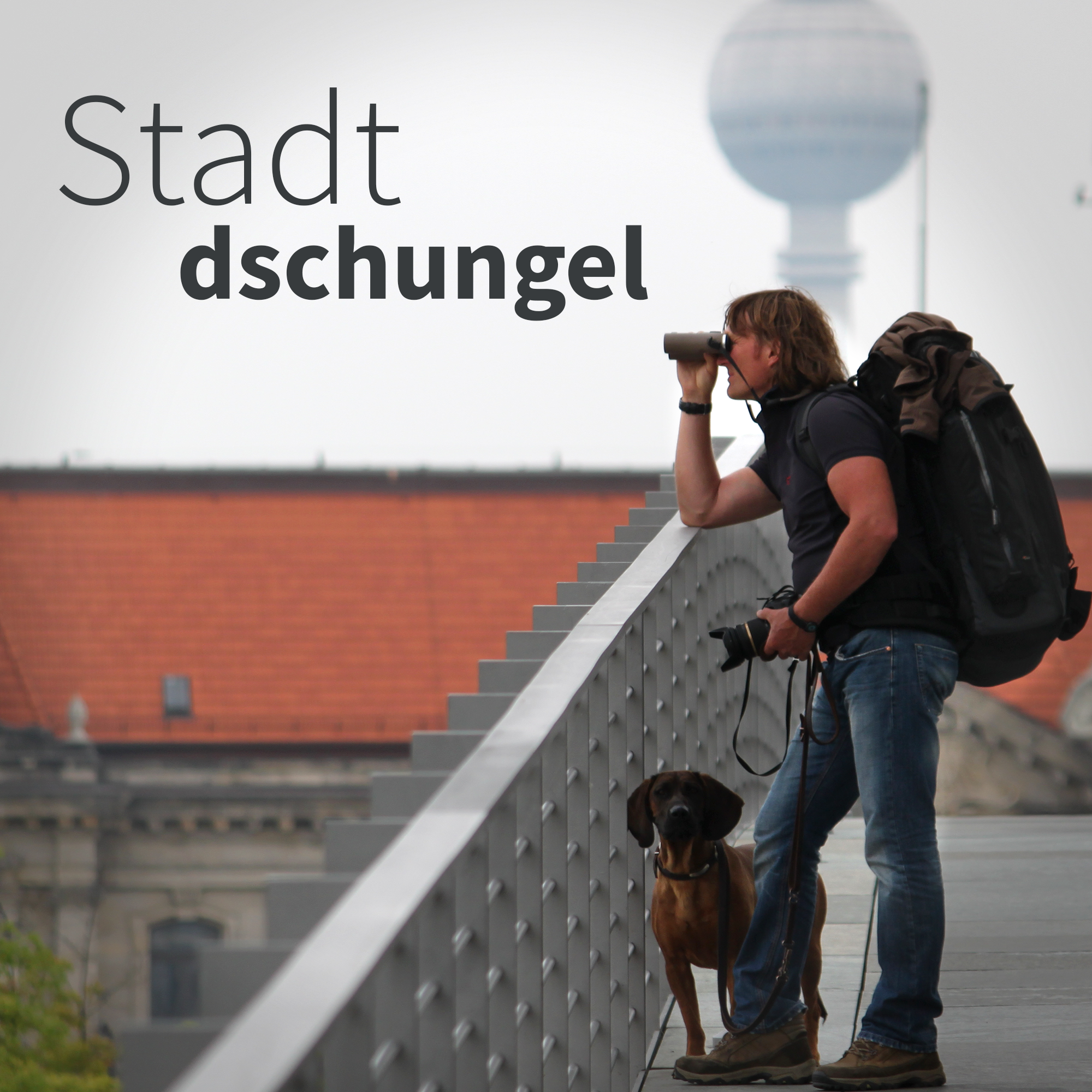Stadtdschungel. Der Tier- und Naturpodcast mit Andreas Kieling und Alexander Metzler show art