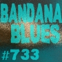 Artwork for Bandana Blues #733 - Blues & Such