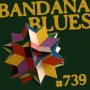 Artwork for Bandana Blues #739 - Diversified & Out of Sight