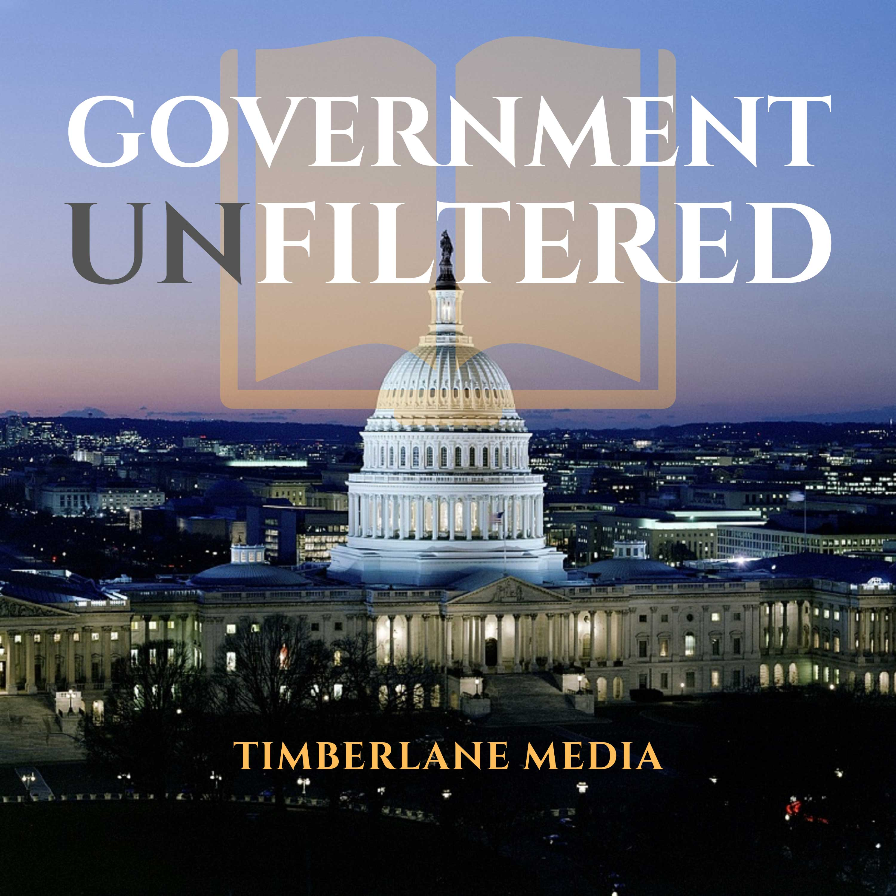 Government Unfiltered show art