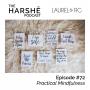 Artwork for Episode #72: Practical Mindfulness