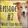 Artwork for A Few of Fido's Essential Needs