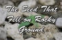 Artwork for FBP 609 - The Seed That Fell On Rocky Ground