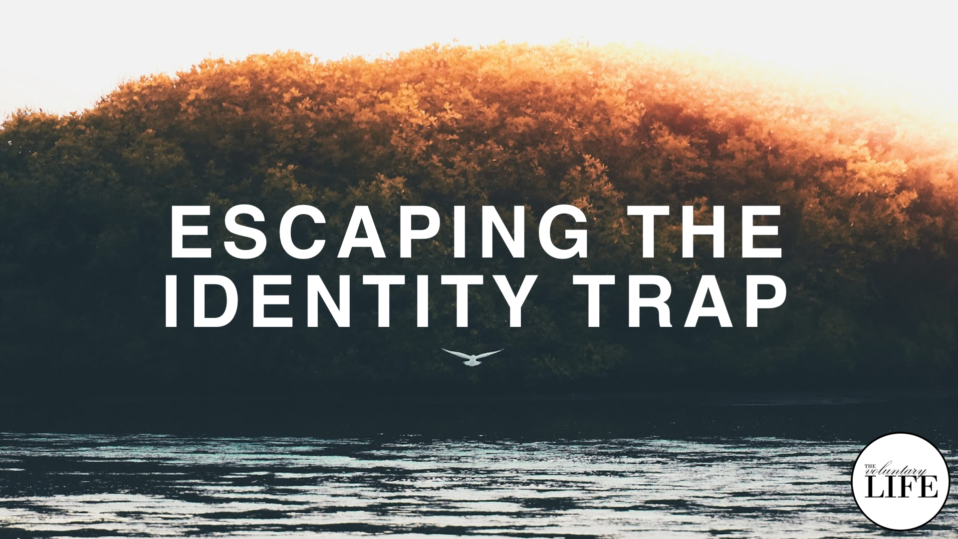 290 Escaping The Identity Trap