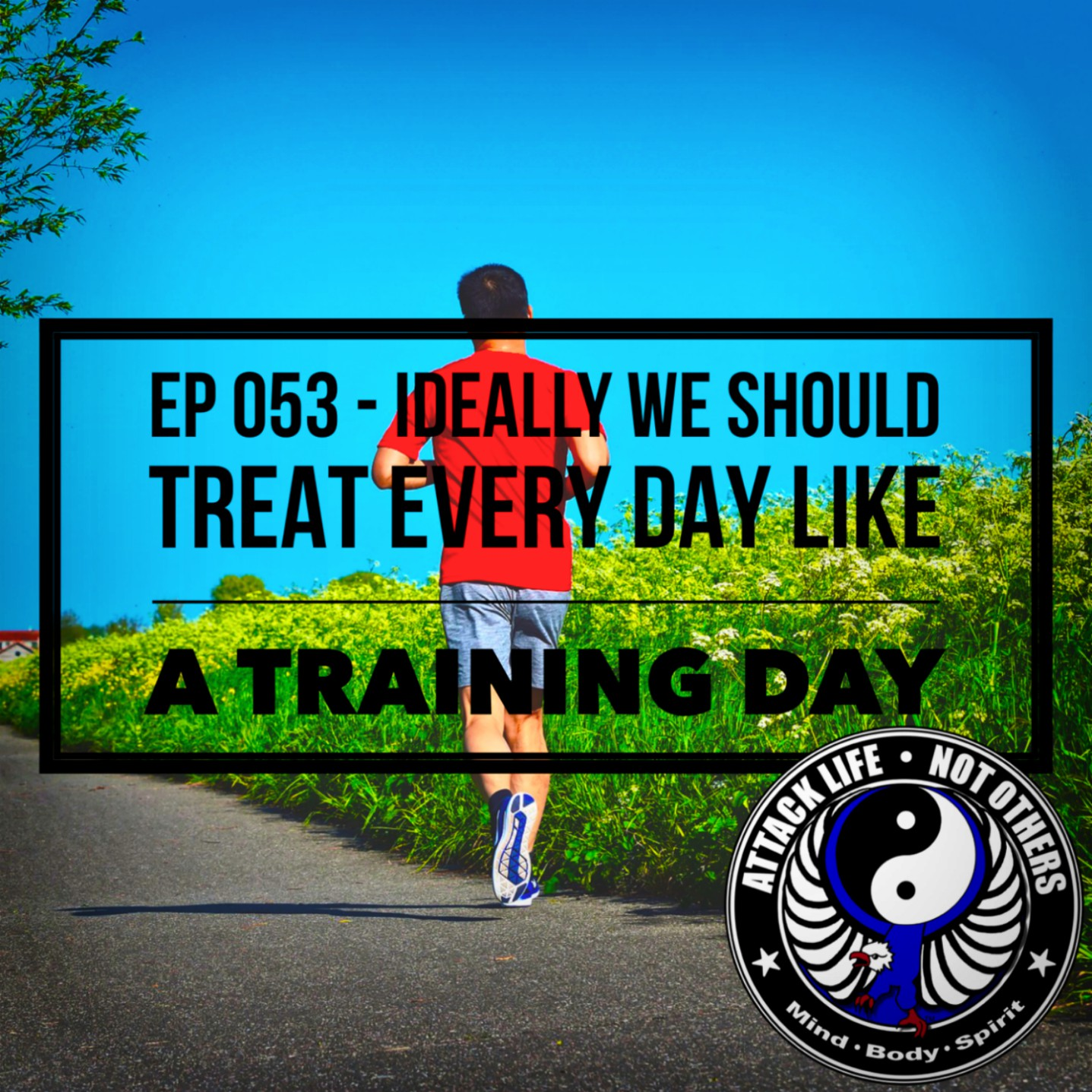 Artwork for Ep 053 - Ideally We Should Treat Every Day Like a Training Day