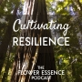 Artwork for FEP29 Cultivating Resilience