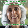 Artwork for In the Realm of the Barely Feasible with Arati Prabhakar [Idea Machines #37]