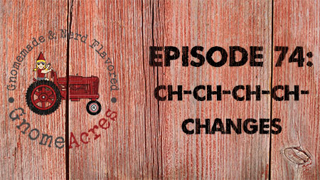 Artwork for Ep 74: Ch-Ch-Ch-Ch-Changes