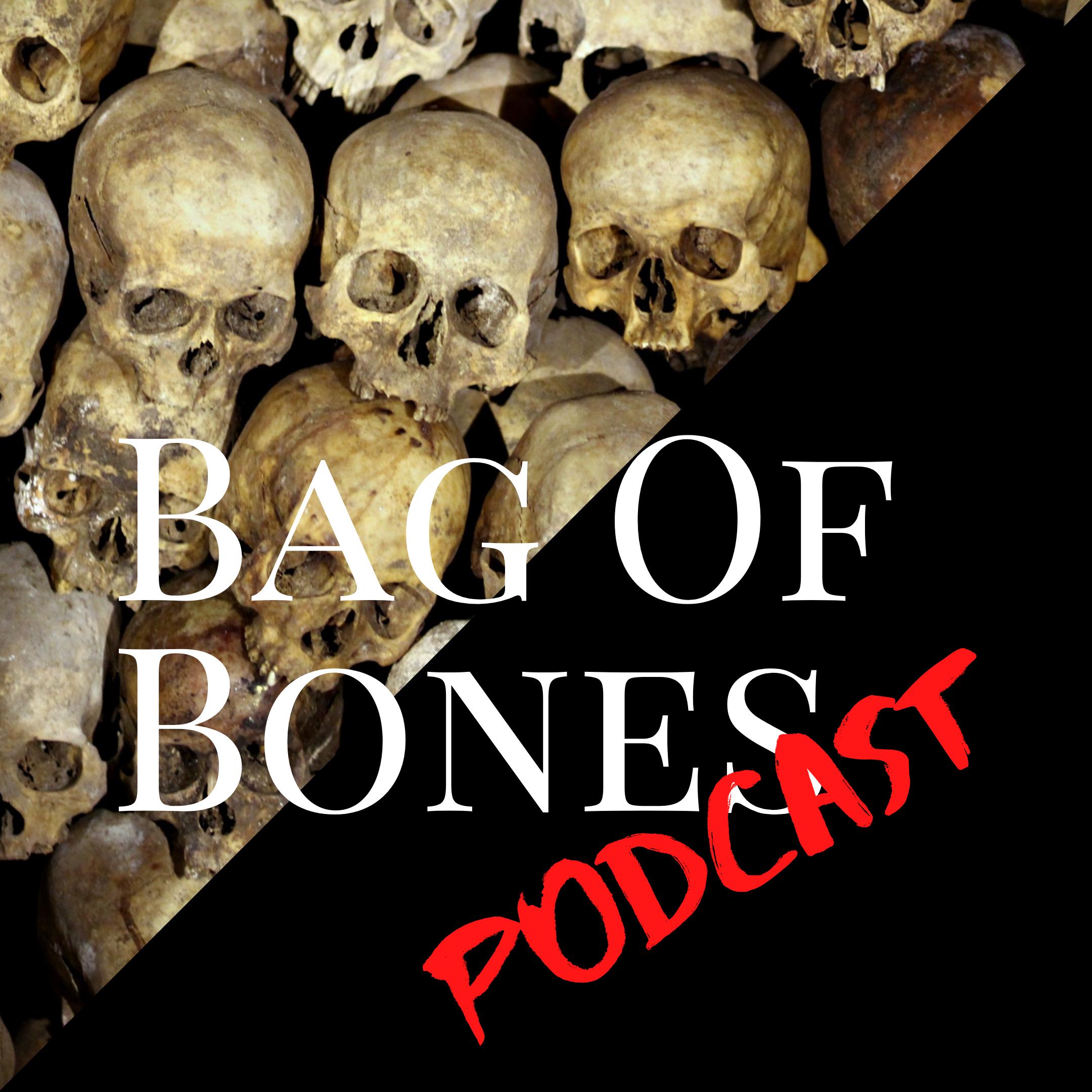 Bag of Bones show art