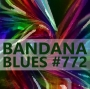 Artwork for Bandana Blues #772 - First Show Of 2019