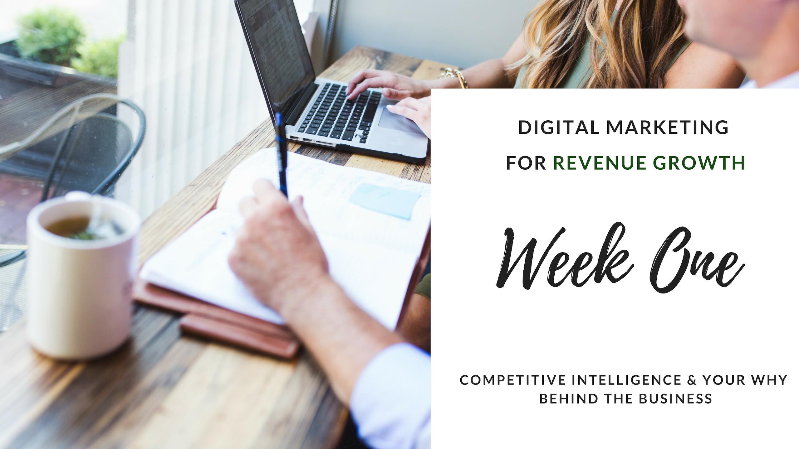Artwork for Digital Marketing For Revenue Growth
