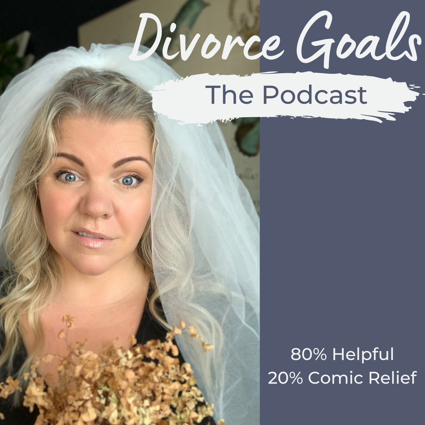 Divorce Goals Podcast show art