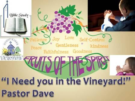 I Need you in the Vineyard!