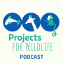 Artwork for Episode 000 Projects for Wildlife - Welcome!