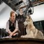 Artwork for Episode 73 - Outlander Season 4 Wrap-Up LIVE SHOW!