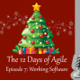 Artwork for 12 Days of Agile - Working Software