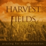 Artwork for Harvest Fields - 'Travelling Companions' (Numbers 10:11-13; 29-36)