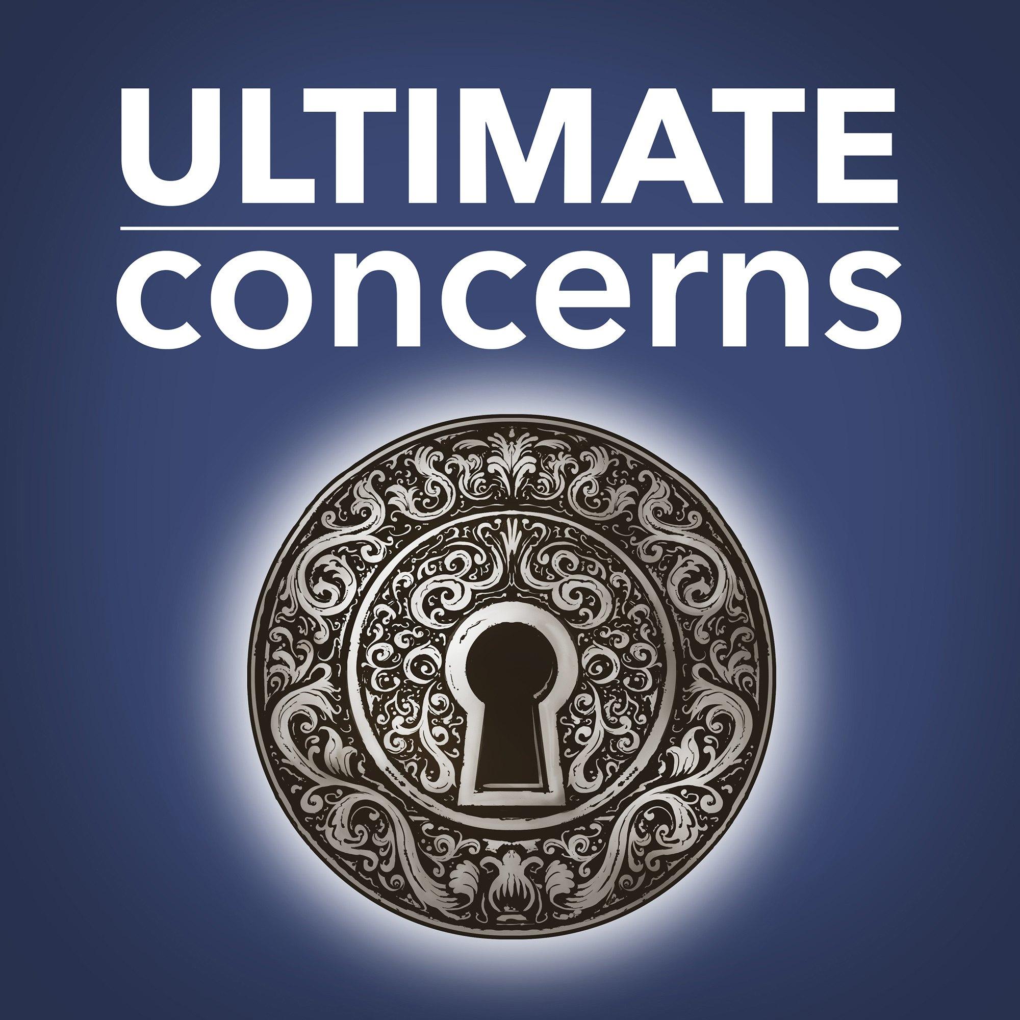 Ultimate Concerns show art
