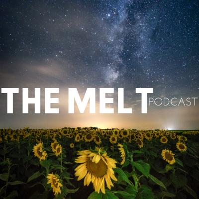 The Melt show image