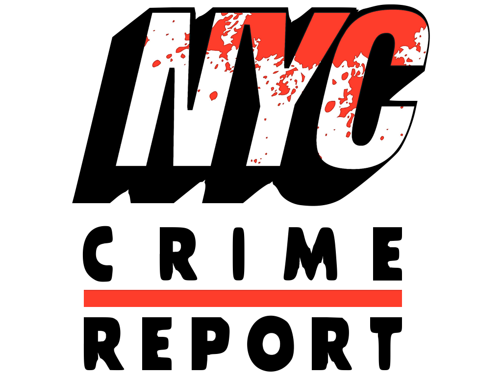 The New York City Crime Report with Pat Dixon show art