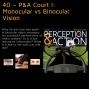 Artwork for 40 – P&A Court I: Monocular vs Binocular Vision