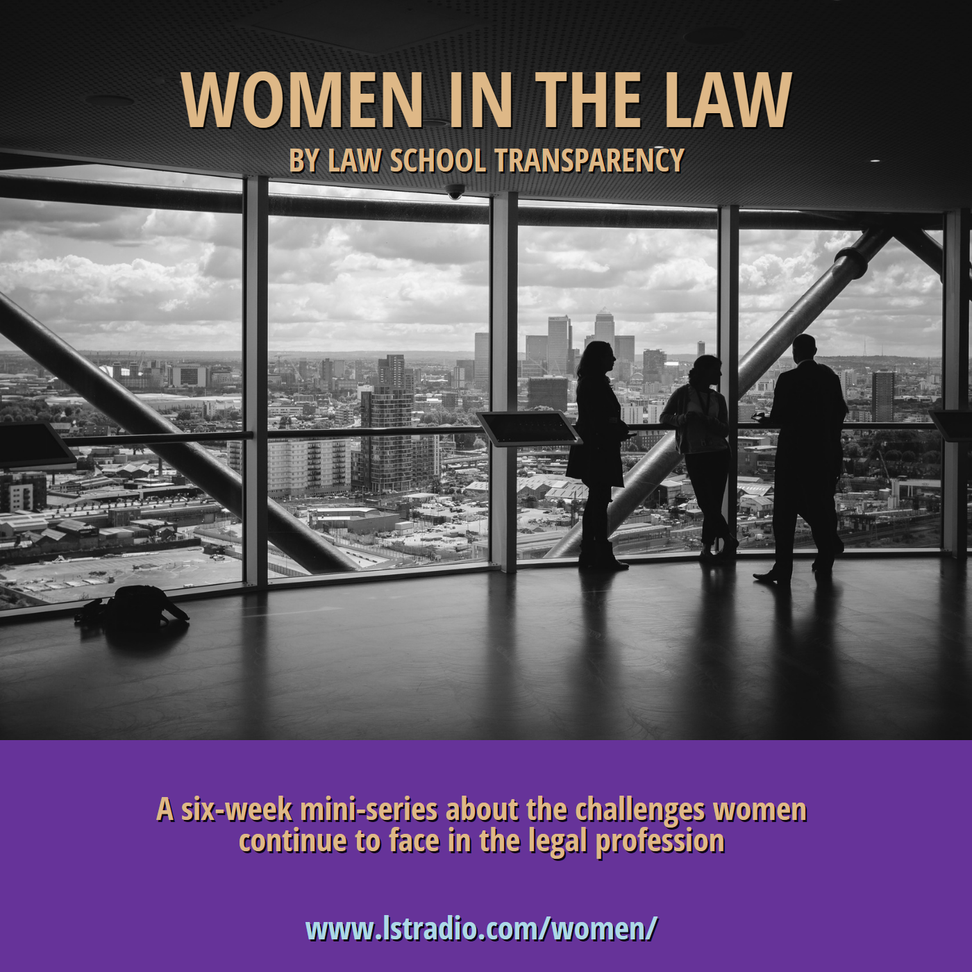 LST's Women In The Law show art